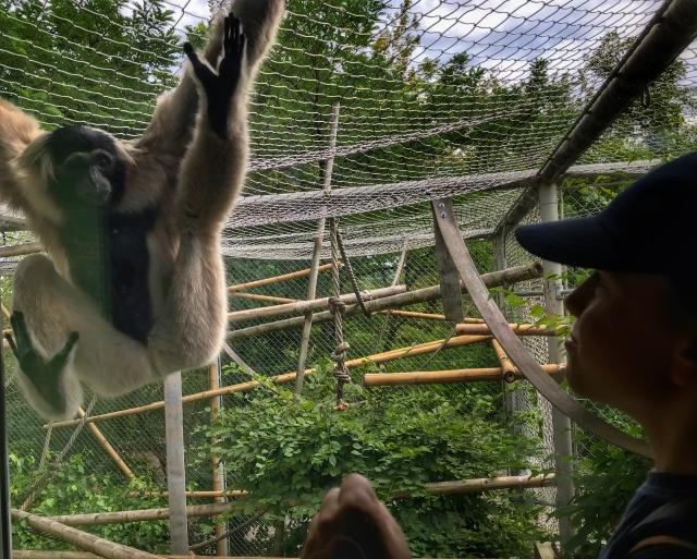 Zoo Zurich - kto tu kogo obserwuje?
